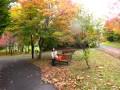 紅葉に癒やされて~♪熊の沢公園sapporo.wmv